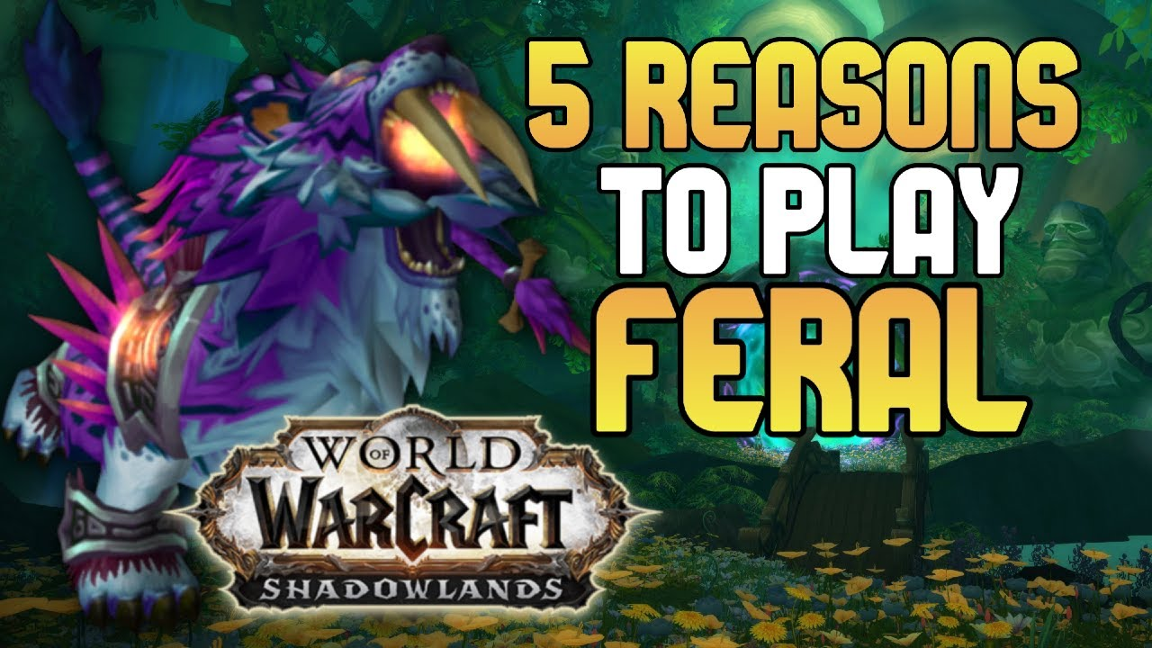 5 Reasons To Play Feral Druid In Shadowlands Mgn World Of Warcraft
