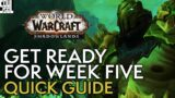 Shadowlands Week 5 Guide: What To Expect