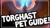Best Pets for TORGHAST! | Torghast Hunter Pet Guide | World of Warcraft Shadowlands 9.0.2
