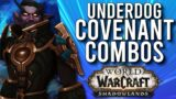 The LEAST Popular Class / Covenant Combinations in Shadowlands! – WoW: 9.0